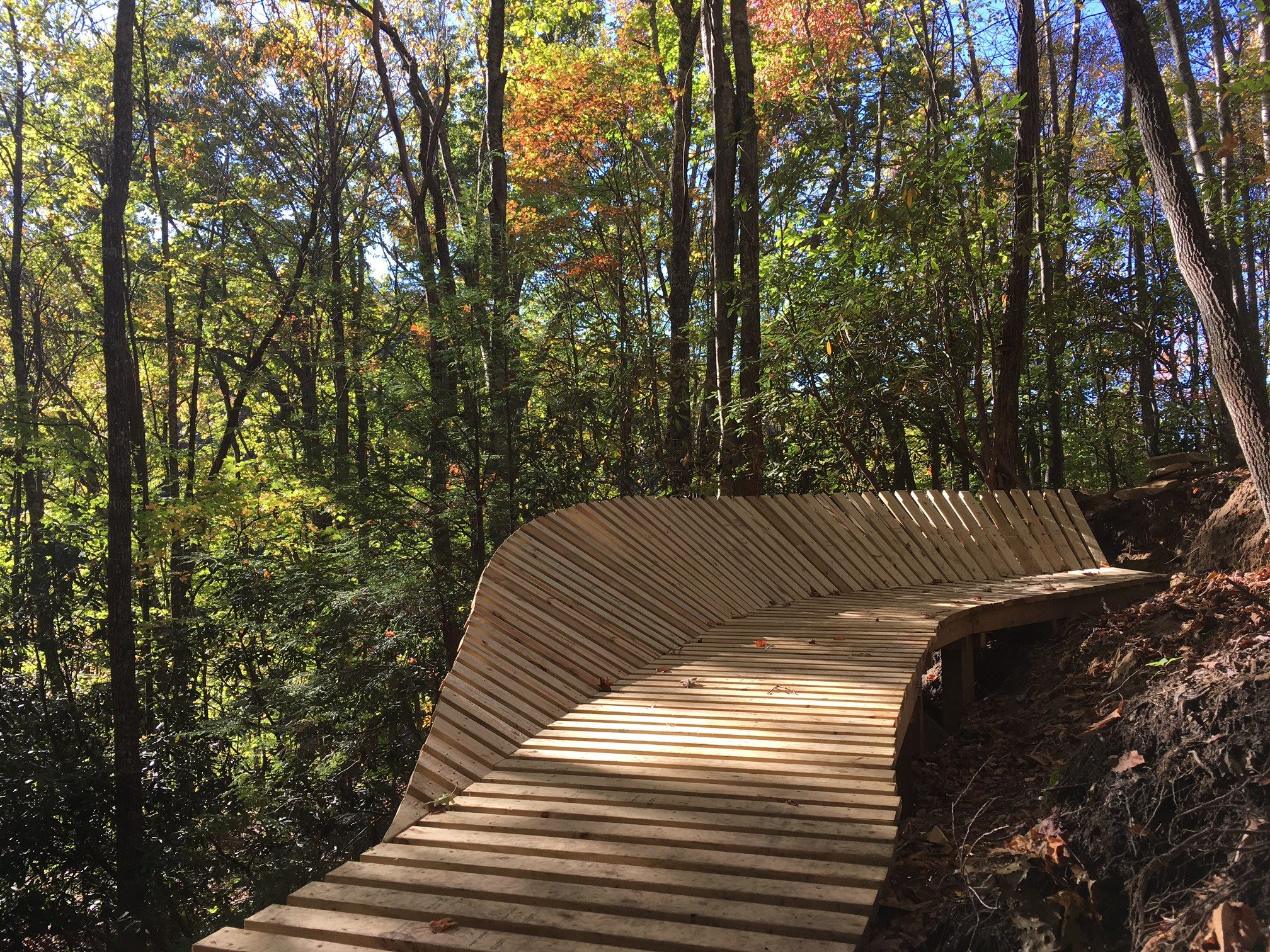 Photo of a bridge on a mountain biking trail