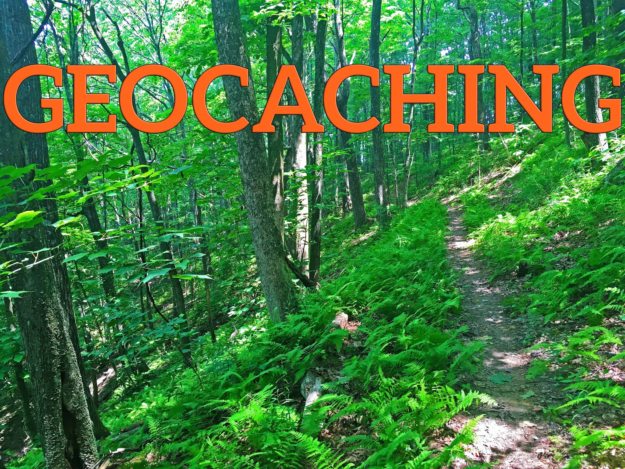 Photo of woods and geocaching title