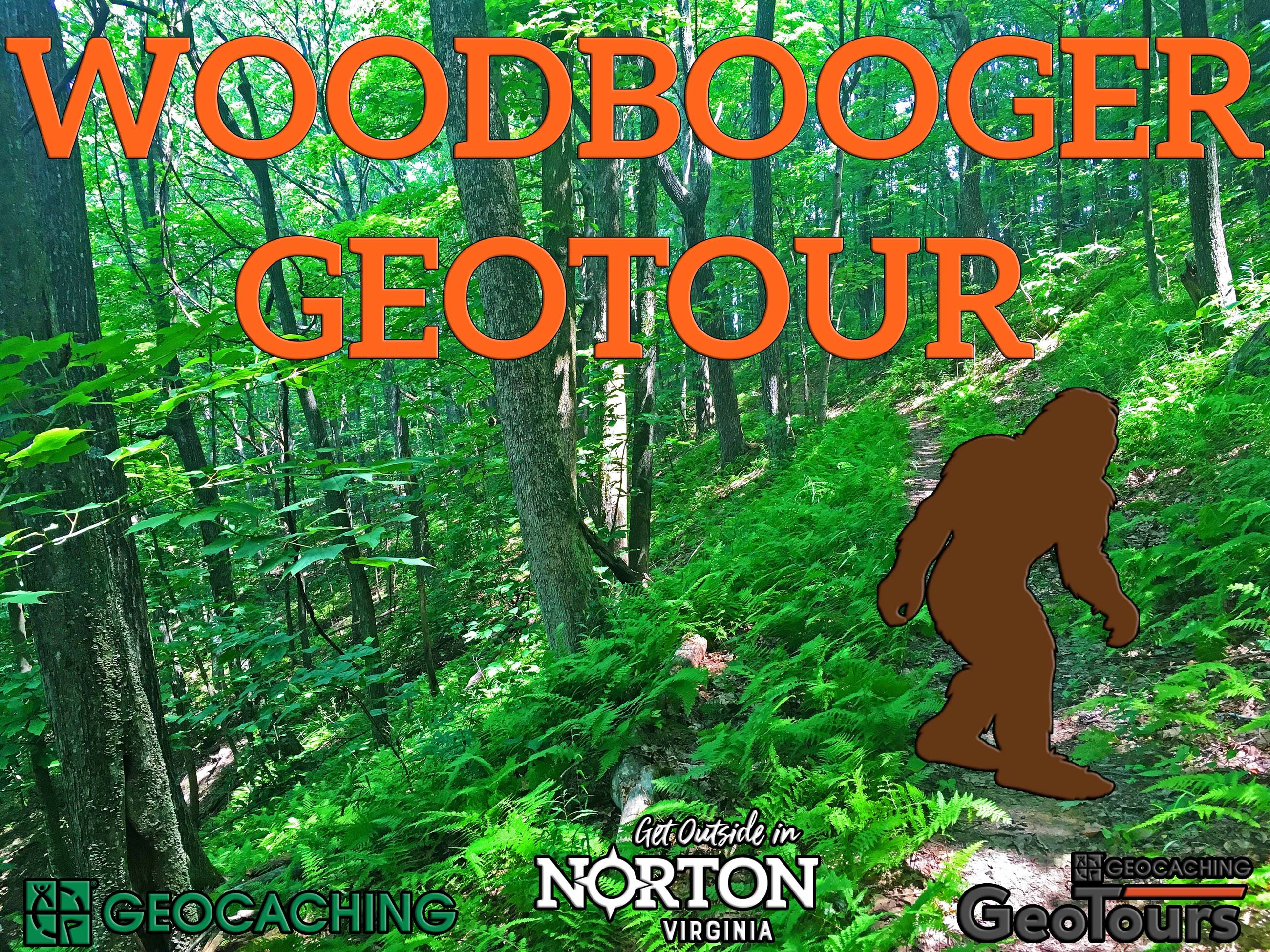 Photo of woods and Woodbooger GeoTour headline